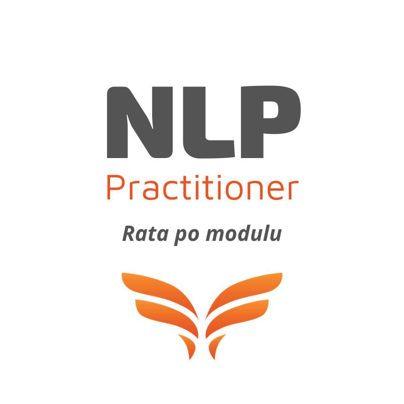 PRACTITIONER - Rata po modulu